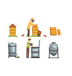 honey production process beekeeper harvesting and vector image