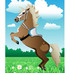 prancing pony vector image