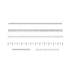 rulers set inches and centimeters vector image