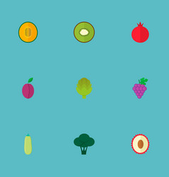 set of fruit icons flat style symbols with melon vector image