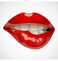 Red lips vector