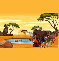 scene with animals in savanna field vector image
