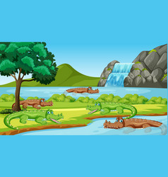 scene with many crocodiles in river vector image