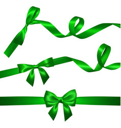 set realistic green bow with long curled green vector image
