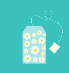 tea bag herbal chamomile daisy camomile flower vector image