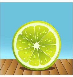 summer lime fruit vector image vector image