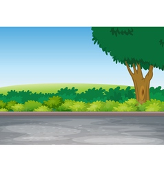 Tree beside road vector