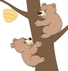 Bear Cubs Trying to get Honey vector