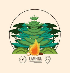 Camping zone with trees plant and fire wooden vector