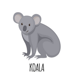 Cute koala in flat style vector
