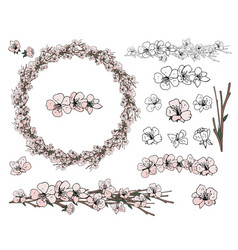 wreath from spring apple flowers on the white vector image
