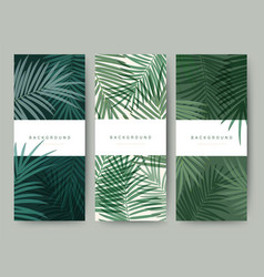 branding packaging palm coconut bamboo tree leaf vector image