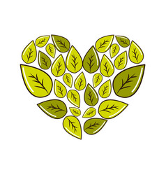 green leaves with form of heart vector image