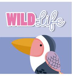 Bird wildlife animal cartoon vector