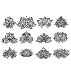 Paisley flowers and mandala set vector image