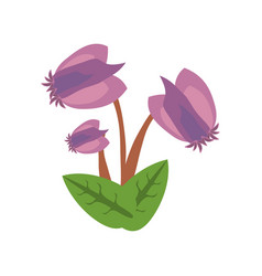 purple flower image icon vector image