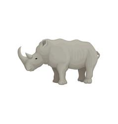 rhinoceros wild animal side view vector image