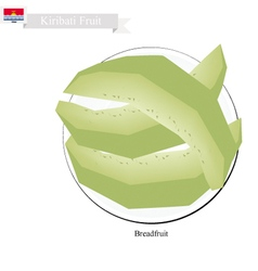 Ripe Breadfruit A Popular Fruit in Kiribati vector