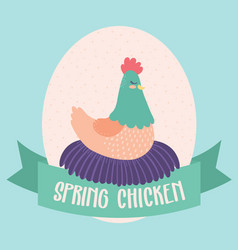 spring chicken clip art vector image