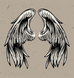 two angel wings template vector image