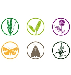 plant weed icon vector image vector image