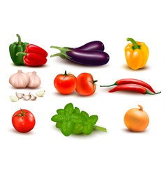 The big colorful group of vegetables vector image vector image