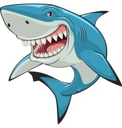 White shark vector