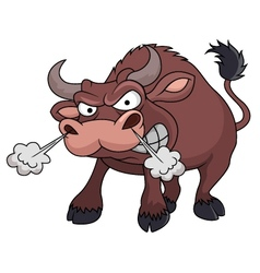 Angry bull cartoon vector image