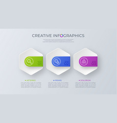 contemporary minimalist infographic design vector image
