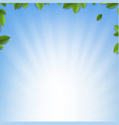 Green leaves frame with sunburst blue background vector