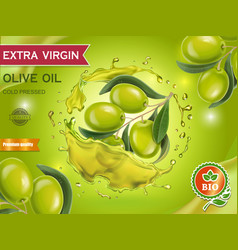 olive oil design banner with olive branch vector image