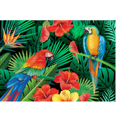 Parrots with tropical plants vector