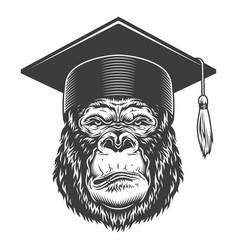 Serious gorilla in monochrome style vector