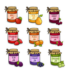set of colored jars with delicious homemade jam vector image