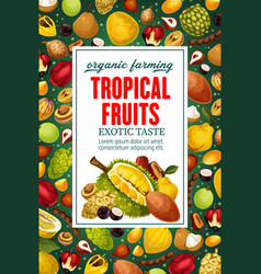 Tropical fruits exotic food vector