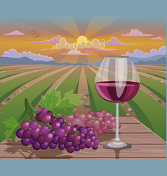 wine glass and grapes in wineyard vector image