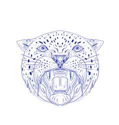 angry jaguar head drawing vector image