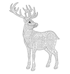 Deer adult coloring page vector