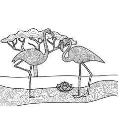 Flamingo coloring book for adults vector image