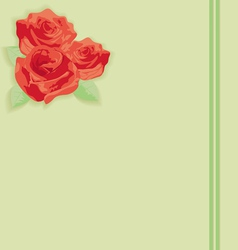Flowers a rose on paper vector image