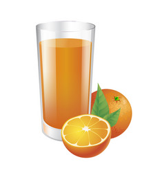 glass of orange juice and oranges vector image