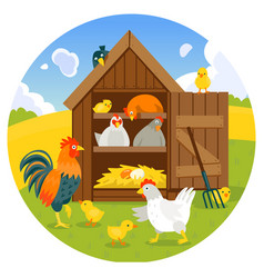 henhouse with funny birds on a green lawn vector image