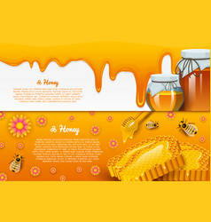 Honey or natural farm product beekeeping or vector