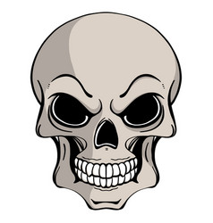 Human skull in ink hand drawn vector
