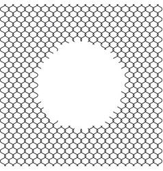 chain link fence with hole vector image