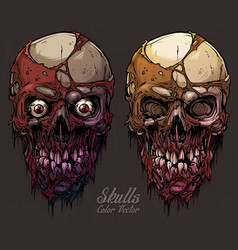 Detailed graphic colorful human skulls set vector