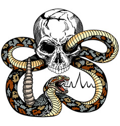 Human skull and snake tattoo vector