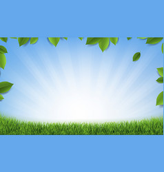 Leaves frame with sunburst background and green vector