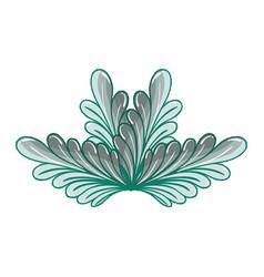 nice plant decoration herbal botany vector image