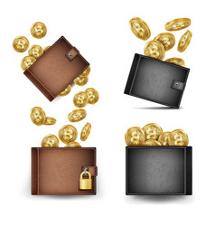 bitcoin wallet set bitcoin gold coins vector image